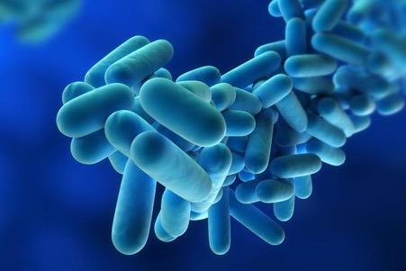 Legionellosis Risk Assessment Image.jpg